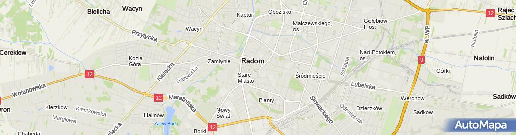 Zdjęcie satelitarne Lucyna Zagórska - Działalność Gospodarcza