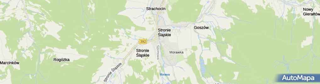 Zdjęcie satelitarne Łysoniewski G.Usł.Leśne, Stronie Śl.