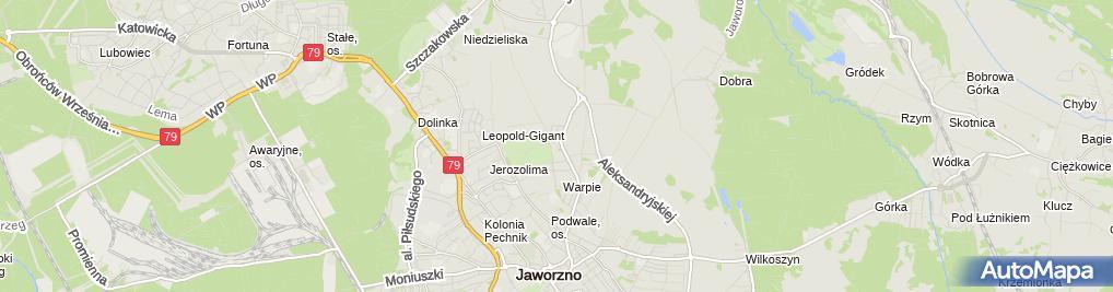Zdjęcie satelitarne Maria Surma - Działalność Gospodarcza