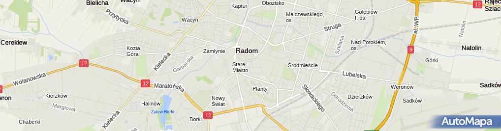 Zdjęcie satelitarne Marianna Korczyńska - Działalność Gospodarcza