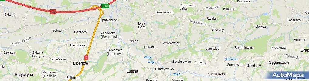 Zdjęcie satelitarne Mariusz Lalik Lalix Pracownia Artystyczna