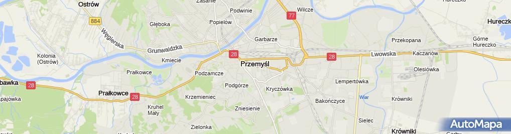 Zdjęcie satelitarne Marta Wiśniewska-Lupa Przedsiębiorstwo Handlowo-Usługowe Leon