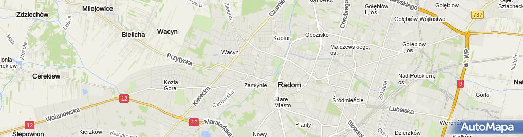 Zdjęcie satelitarne Mirosław Sobczyk Flaming Zakład Produkcji Odzieży, Soley