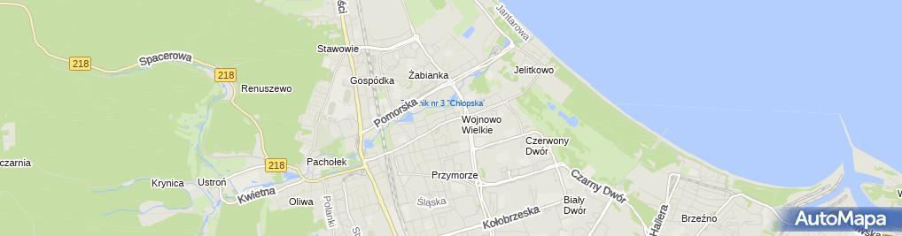 Zdjęcie satelitarne Moto Usługi Motus