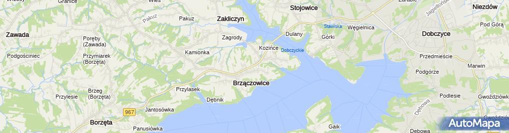 Zdjęcie satelitarne Nowa Gawęda