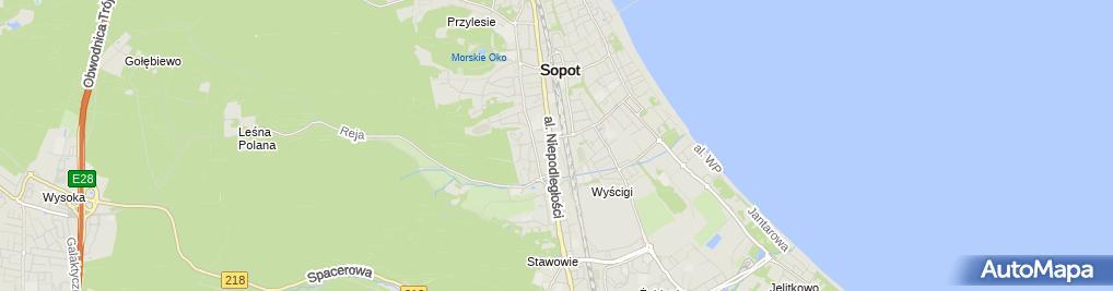 Zdjęcie satelitarne Nowa Scena
