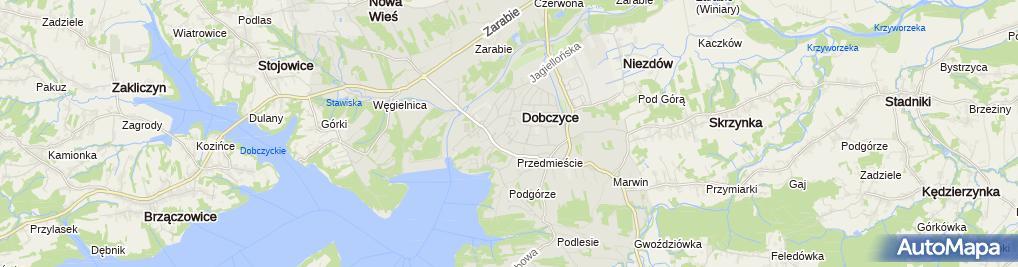 """Zdjęcie satelitarne """"Olea"""" Agnieszka Lipiarska"""
