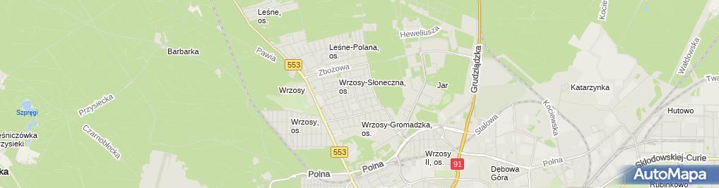 Zdjęcie satelitarne Organizm Mirosław Gurzyński