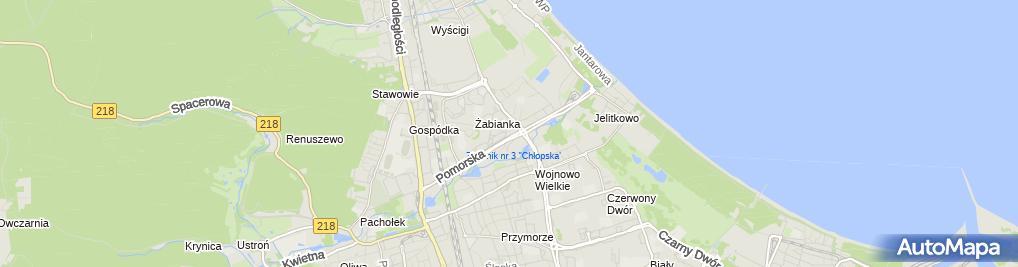 Zdjęcie satelitarne Ozdoba
