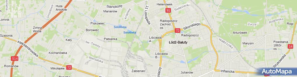 Zdjęcie satelitarne P&G Trans Sped Paweł Zieliński Grzegorz Fatyga