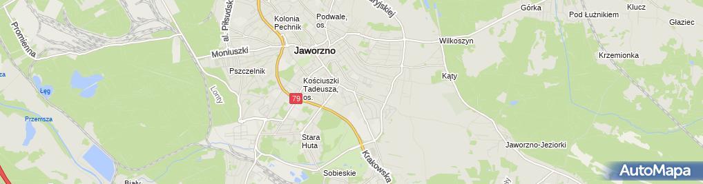 Zdjęcie satelitarne P H P Sukces III Gańska Beata Gański Marek