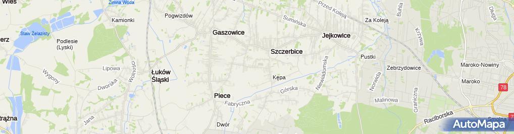 Zdjęcie satelitarne P.H.U.Oktan II Marian Procek