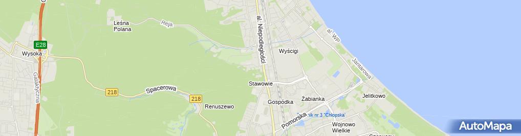 Zdjęcie satelitarne Parcela