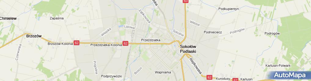 Zdjęcie satelitarne Pierzchlewska