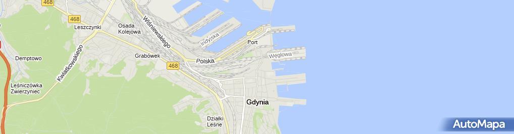 Zdjęcie satelitarne Pit Stop