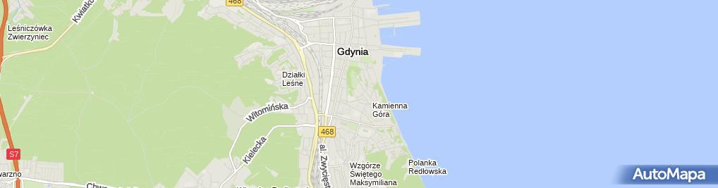 Zdjęcie satelitarne Podróżnik Agnieszka Siech Wojciech Mikuć