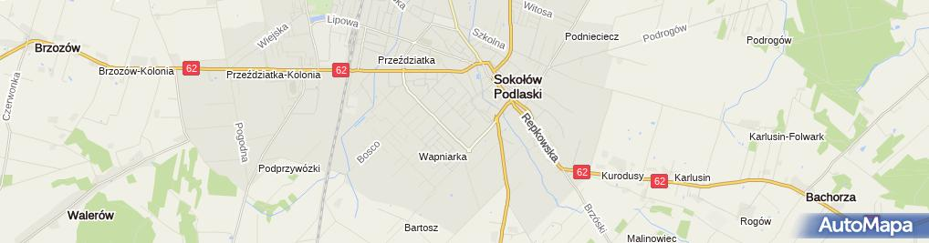 Zdjęcie satelitarne Pogorzelski Tomasz Top-Car