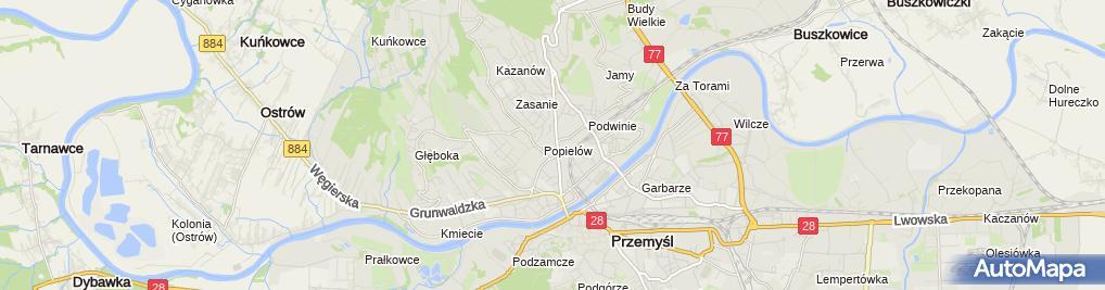 Zdjęcie satelitarne Polski Związek Wschodni