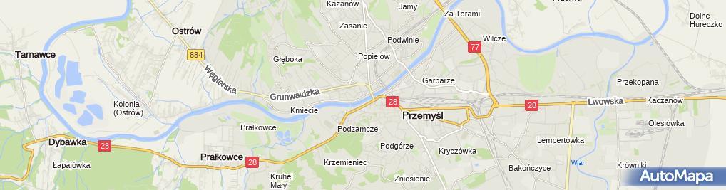 Zdjęcie satelitarne Polskie Towarzystwo Walki z Kalectwem Oddział w Przemyślu