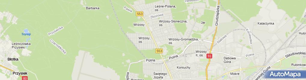 Zdjęcie satelitarne Przeds Handlowe Martex Śmietańscy Tadeusz i Justyna