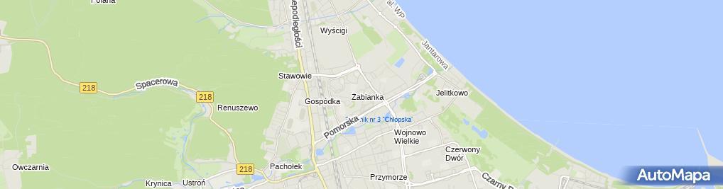 Zdjęcie satelitarne Przedsiębiorstwo Usługowo Handlowe Michał Czarnecki