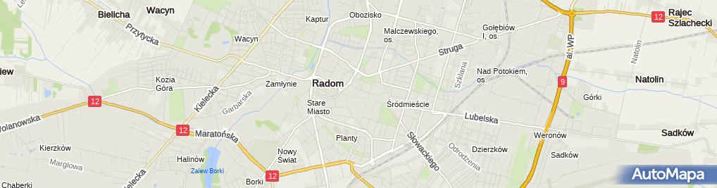 Zdjęcie satelitarne Przedsiębiorstwo Usługowo-Handlowe Wiola Wiolanda Gizińska