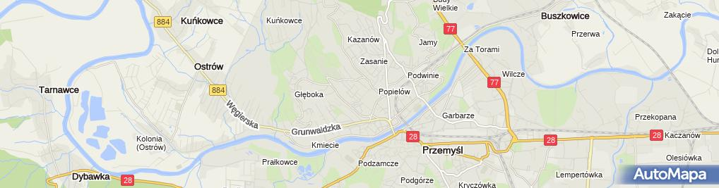 Zdjęcie satelitarne Przemysław Dudkowski RWP Poland