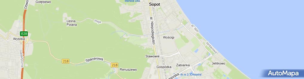 Zdjęcie satelitarne Rafał Kociński BP Service Center Kociński Bejger