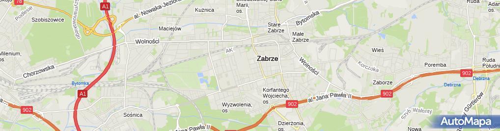 Zdjęcie satelitarne Ramidor Paweł Tomczak Beata Tomczak