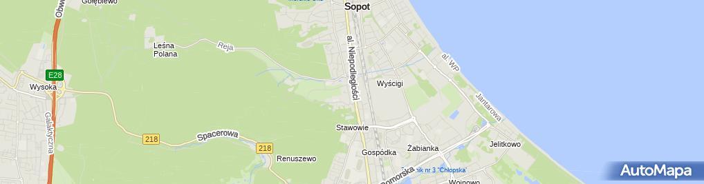 Zdjęcie satelitarne Smart