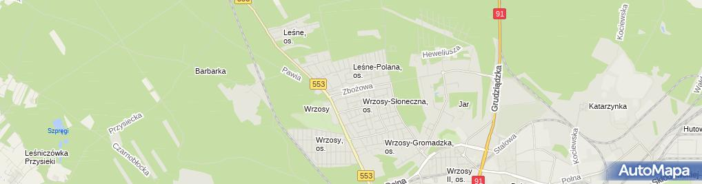 Zdjęcie satelitarne Softoro Edyta Czarnecka