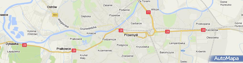 Zdjęcie satelitarne Some Tomorrow Insurance Kornel Sienkiewicz Rafał Szajan