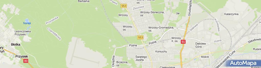 Zdjęcie satelitarne Specjalistyczne Usługi Edukacyjne Łukasz Borowski