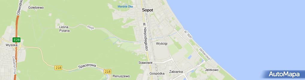 Zdjęcie satelitarne Sprzedaż Hurtowa i Detaliczna Torbut Alicja Dmochewicz Paweł Górski