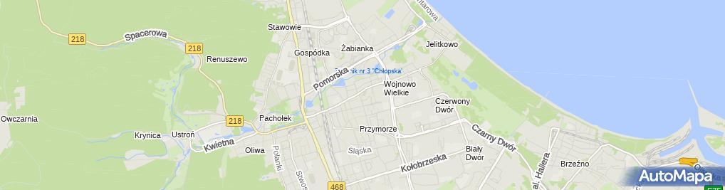 Zdjęcie satelitarne Stowarzyszenie Ruch Kobiet do Walki z Rakiem Piersi Europa Donna Gdańsk