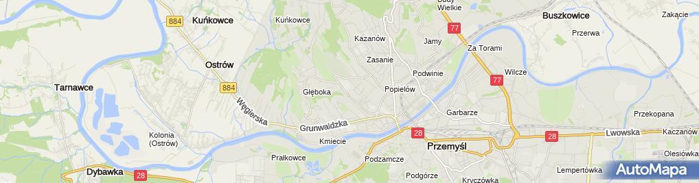 Zdjęcie satelitarne Tadeusz Sroka Firma Handlowo-Usługowa