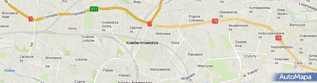 Zdjęcie satelitarne Taksówka Bagażowa