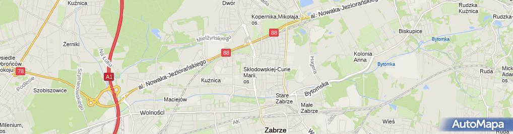 Zdjęcie satelitarne Taksówka Osobowa Auto Handel