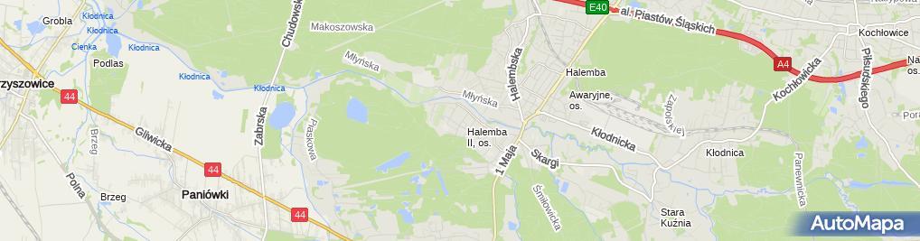 Zdjęcie satelitarne Talaśka Tomas