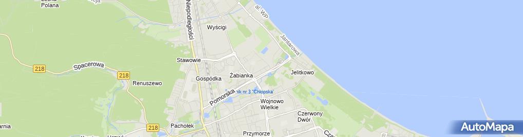 Zdjęcie satelitarne Toper