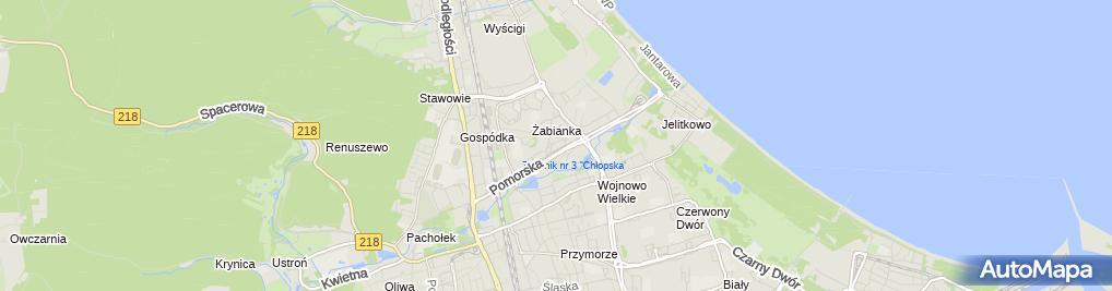Zdjęcie satelitarne Trade Pack Paweł Kiwenko