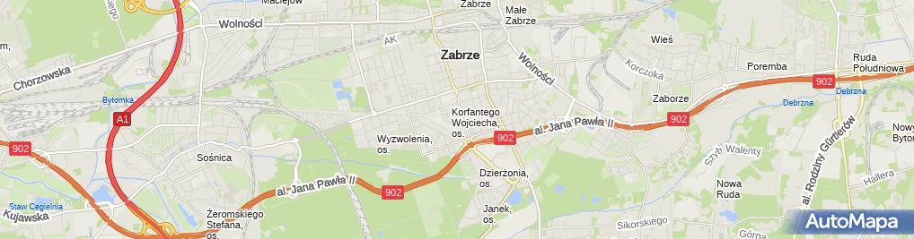 Zdjęcie satelitarne Transport Osobowy