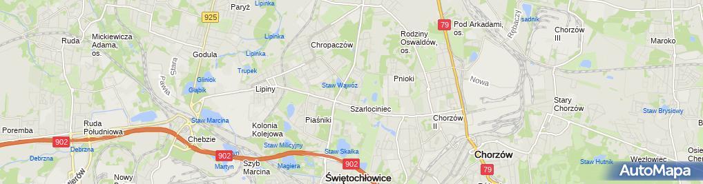 Zdjęcie satelitarne Transport Skorpio Adrian Stałęga