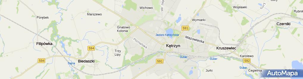 Zdjęcie satelitarne Transport Usługowy