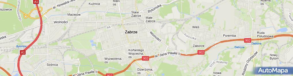 Zdjęcie satelitarne TS - Wiktoria Tomasz Szynkiewicz