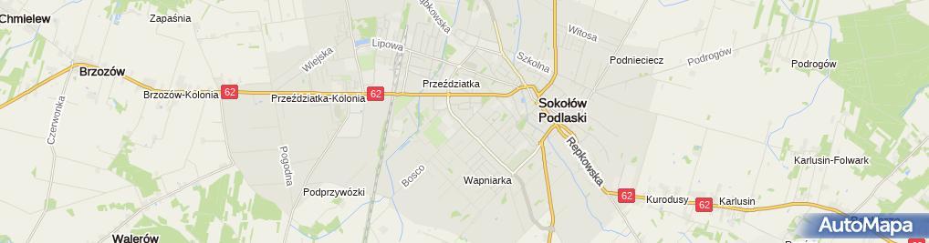 Zdjęcie satelitarne Tyborex Justyna Tyborowicz