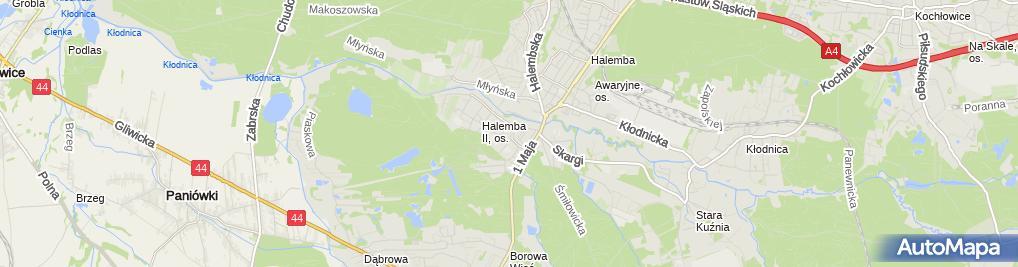 Zdjęcie satelitarne Upominek