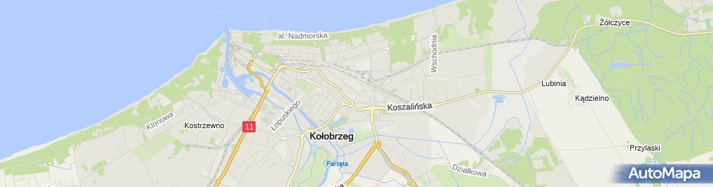 Zdjęcie satelitarne Usługi Pielęgniarske Wynajem Pokoi Gościnnych