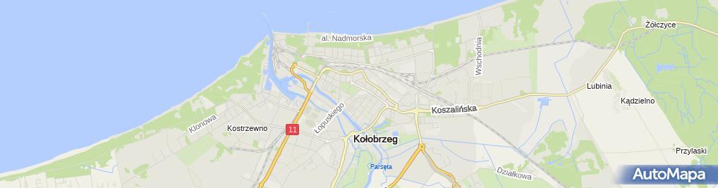 Zdjęcie satelitarne Usługi Pielęgniarskie