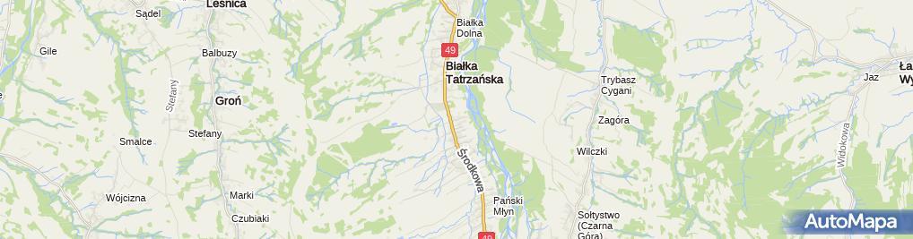 Zdjęcie satelitarne Wioletta Leśniak - Działalność Gospodarcza